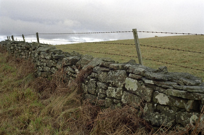 January 2006. Dry stone wall and dried bracken
